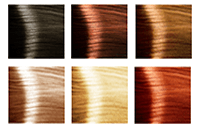 Hair Coverage 1-6