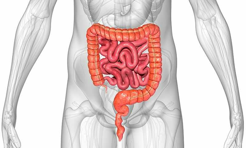 Who Are Probiotics Good For?