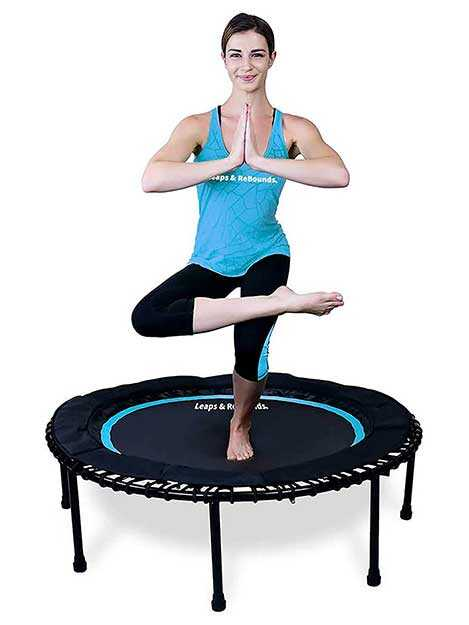 Leaps & Rebounds Fitness Trampoline